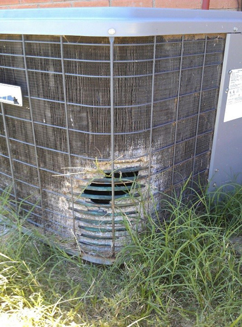 Protect your condenser from pet damage